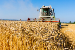 How AI Can Aid the Agriculture Sector